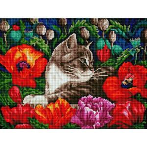 """GF776 Алмазная мозаика на подрамнике """"Кот в маках"""" 40х50 см"""