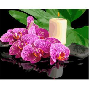 Картина по номерам GX 29058 Орхидея и свеча 40*50