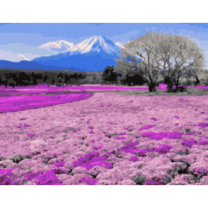 Картина по номерам GX 30022 Пора цветения 40*50