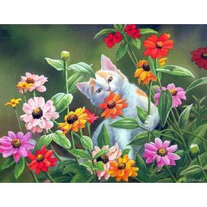 """ЕХ5235 """"Кот среди цветов"""", 30х40 см - купить недорого в интернет магазине"""