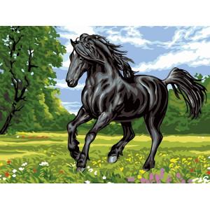 """ЕХ5267 """"Черный конь"""", 30х40 см - купить недорого в интернет магазине"""