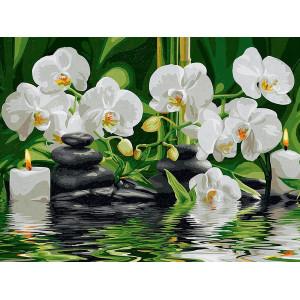 """ЕХ5261 """"Белые орхидеи и камни"""", 30х40 см - купить недорого в интернет магазине"""