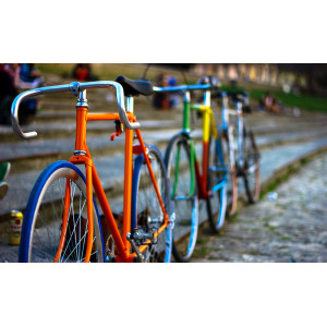 "GХ7103 ""Велосипеды"", 40х50 см"