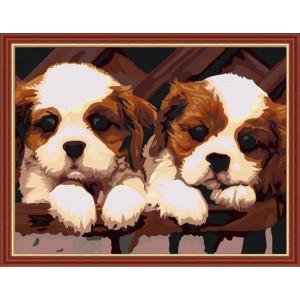 "G268 ""Два щенка"", 40х50 см"