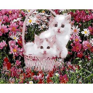 "GX9160 ""Два розовых котенка в корзинке"", 40х50 см купить в Омске недорого"