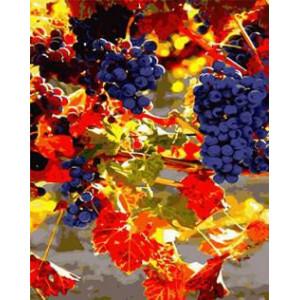 "GX8677 ""Синий виноград"", 40х50 см"