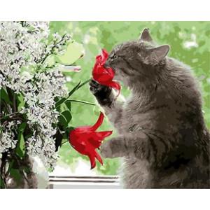 """GX8826 """"Кот нюхает цветок"""", 40х50 см купить в Омске недорого"""