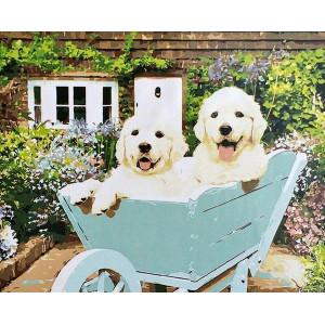"GX8841 ""Два белых щенка в тележке"", 40х50 см"
