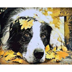 """GX8862 """"Собака в осенних листьях"""", 40х50 см"""