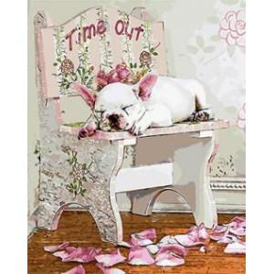 "GX8891 ""Собака спит на стуле"", 40х50 см"