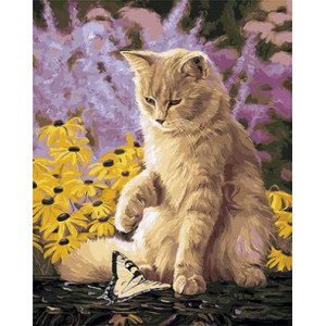 "GX9297 ""Кот смотрит на бабочку"", 40х50 см"