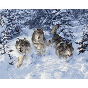 """GХ3469 """"Три волка бегут"""", 40х50 см"""