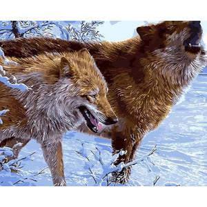 """GХ3577 """"Два волка"""", 40х50 см купить в Омске недорого"""