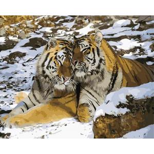 "GХ9847 ""Тигр и тигрица зимой"", 40х50 см"