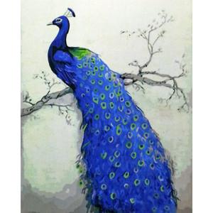 GX8251 Картина раскраска по номерам на холсте Прекрасный павлин 40х50 купить в Омске недорого