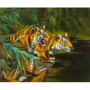 GX8468 Тигры у реки 40 на 50