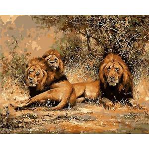 """GX9239 """"Три льва лежат"""", 40х50 см"""