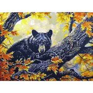 GX9632 Медведь в осеннем лесу 40х50