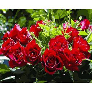 """GХ3200 """"Красные розы"""" , 40х50 см купить в Омске недорого"""
