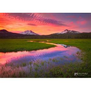 GX3127 Великолепный пейзаж Чипа Филлипса 40х50см купить в Омске недорого