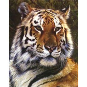 Вышивка крестиком 40Х50 Арт. 0091 Тигр